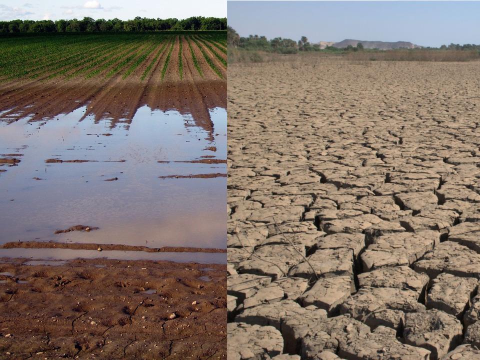 Film Klimawandel